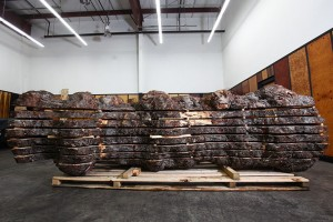 A large Mappa Boul log on a pallet about 9 feet long and 4 foot circumference.