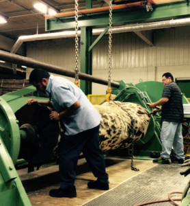 A Rotary slicer which is a large industrial machine slicing veneer by runinng the blasd completely around the circumference of the tree trunk.